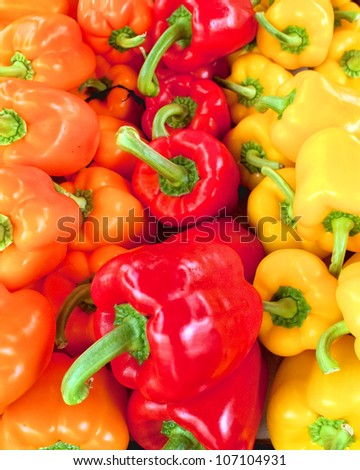 variety of colorful bell peppers - stock photo