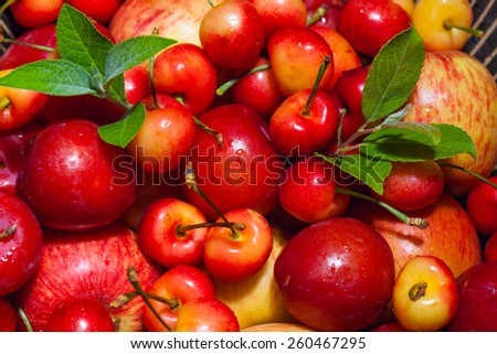 Variety of different red fruits: apples, cherries, plums. Close up - stock photo