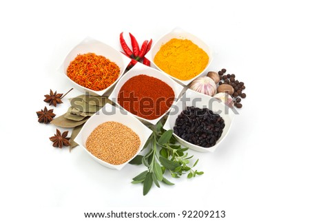 Variety of different spices on white background - stock photo