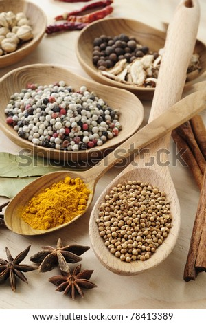 variety of dried spice - stock photo