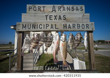 variety of fish hung on cleaning station in port aranas texas harbor - stock photo