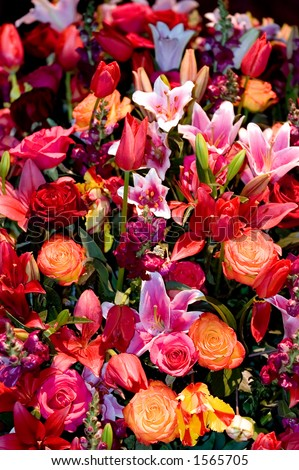 Variety of flowers in composition - stock photo