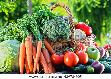 Variety of fresh organic vegetables and fruits in the garden. Balanced diet - stock photo