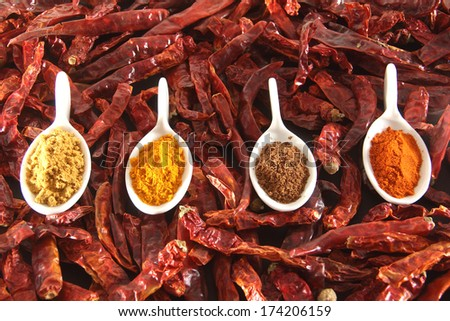variety of indian spices and chilli pepper - stock photo