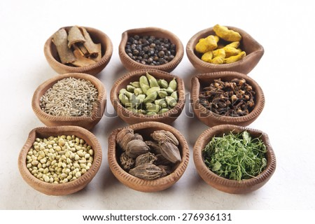 Variety of Indian spices in oil lamps on white background - stock photo