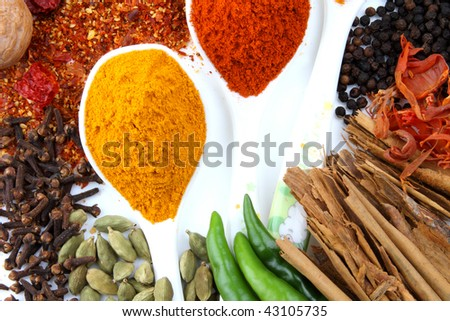 variety of spices on white background with spoons of turmeric and red chillies powder - stock photo