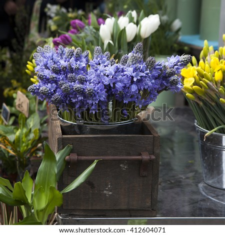 variety of spring flowers in pots on display in shop - stock photo