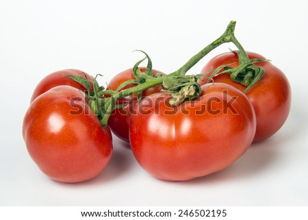 variety of vegetables - stock photo