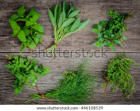 Various aromatic herbs and spices from garden  green mint ,fennel ,oregano, sage,lemon thyme and peppermint set up on old wooden background .
