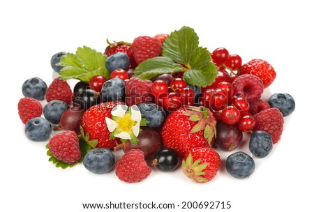 Various berries isolated on white background - stock photo