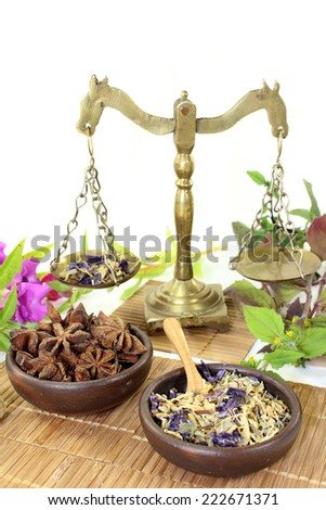 various Chinese remedies on a white background - stock photo