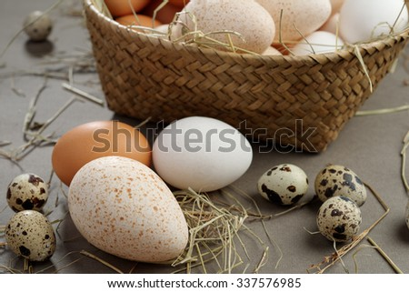 Various eggs and a rustic basket - stock photo