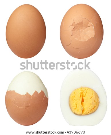 various eggs on white background. each one is in full camera resolution - stock photo