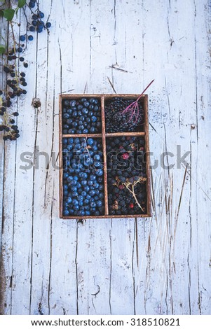 Various forest berries in vintage wooden box from above. Blackthorn, blackberries blackcurrant and elderberry fruits. - stock photo