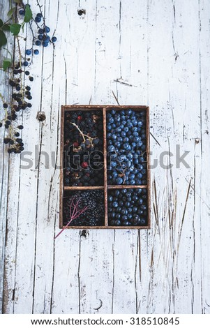 Various forest berries in vintage wooden box from above. Blackthorn, blackberries blackcurrant and elderberry fruits - stock photo