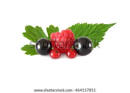 Various fresh fruits berries (raspberries, black currants, red currants), with leaves isolated on white background