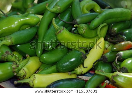 various fresh hot peppers freshly picked - stock photo