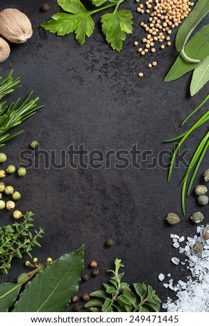 various herbs and spices arranged as a frame on an old metal tray, copyspace - stock photo