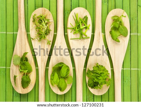 Various herbs on six kitchen spoons, a green bamboo mat as background - stock photo