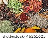 Various Indian spices on the table chef - stock photo