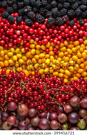various kinds of berries, top view - stock photo