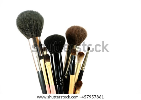 Various makeup brushes isolate