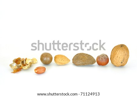 various nuts in a row with one broken nut isolated on white - stock photo
