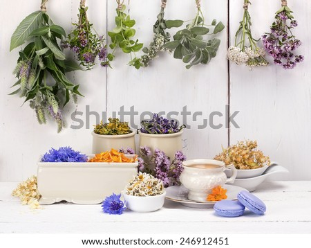 Various of herbal tea. Fresh and dried herbs, flowers on a wooden background. With retro filter effect - stock photo