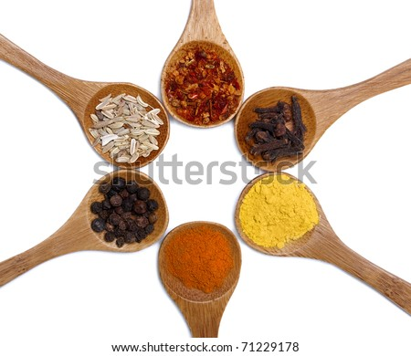 Various of spices in wooden spoon - stock photo