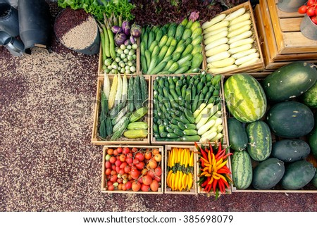 Various of vegetable in garden - stock photo