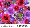 Various Pink, Purple, Red Flowers on top of each other.  Background with Selection of Nine Periwinkle, Rose, CornFlower, Lily, Daisy, Chrysanthemum, Dahlia, Carnation, Primrose Flowers - stock photo