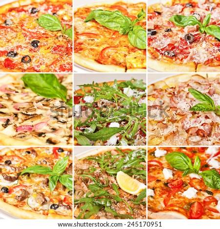 Various pizza collage including spicy pepperoni pizza, tomato basil pizza, prosciutto mozzarella pizza, pizza with panchetta and mushrooms and pizza Margarita - stock photo