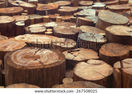 Various size old damaged teak wood logs with cracks and annual rings, Indonesian timber background - stock photo