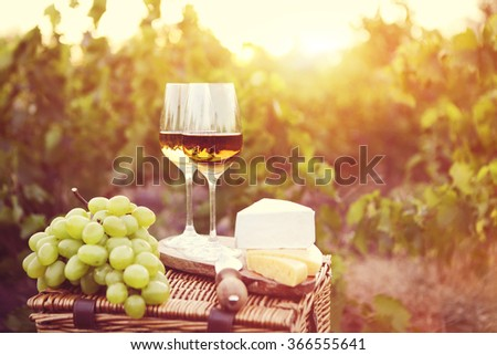 Various sorts of cheese and two glasses of white wine in the vineyard - stock photo