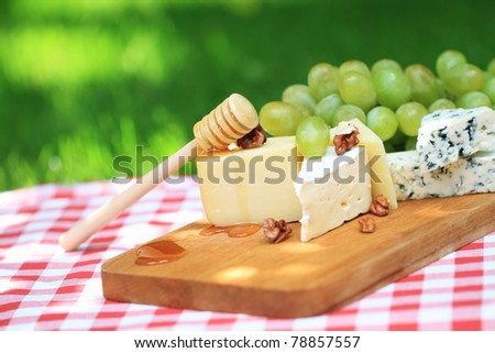 Various sorts of cheese with white grapes