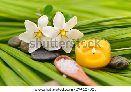 Various spa and green palm background