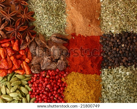 Various spices close up - stock photo