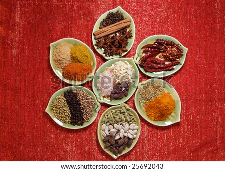 various Spices in seven leaf shape plates on glitter red backdrop - stock photo