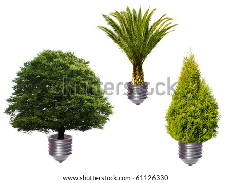 Various trees as bulbs - green energy concept - stock photo