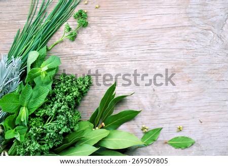 Herbal Background Stock Images RoyaltyFree Images Vectors