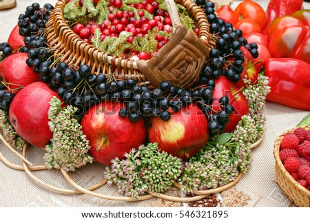 Various vegetables and fruit in the basket. The harvest of fruits and vegetables. Bright and colorful picture: apples, cranberry, chokeberry, raspberry, pepper. At a village fair.