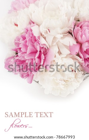 Vase of beautiful peony flowers - stock photo