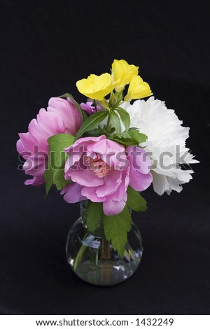 Vase of fresh flowers against black background. Peonies and other spring plants. - stock photo