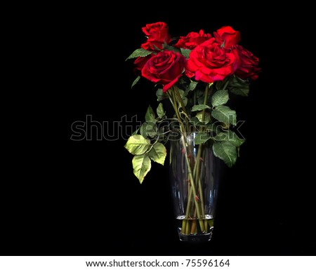 Vase of ruby red roses against black background - stock photo