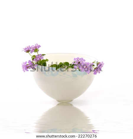 Vase of small pink flowers with reflection - stock photo
