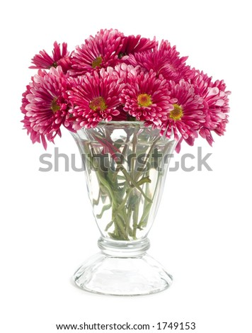 Vase of small red flowers isolated on white. - stock photo