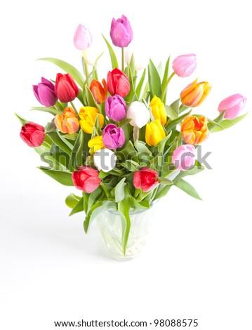 Vase of Tulips isolated on white background - stock photo