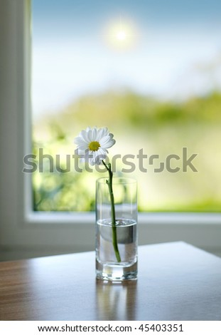 vase with a flower with the sun in the background - stock photo