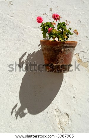 Vase with flowers against a white wall - stock photo