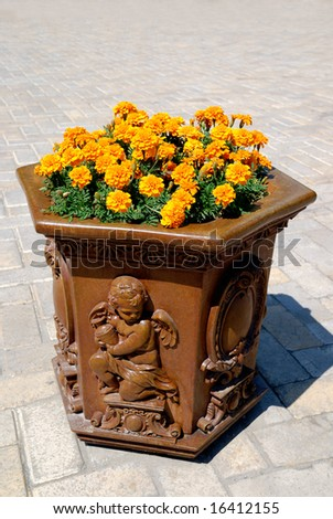 Vase with yellow flowers - stock photo
